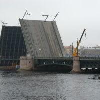 Разведённый Дворцовый мост, Санкт-Петербург