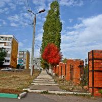 Осенняя тишина., Вольск