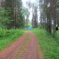 Въезд в пионер-лагерь, Арти