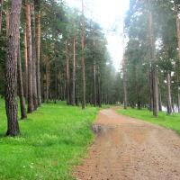 Дорога к пионерскому лагерю, Арти
