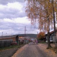 Переулок от Карзинской горы к пруду у школы N 5, Арти