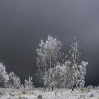 Январь 2017, Десногорск