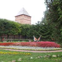 Пл.Победы., Смоленск