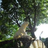 Грот Львица, Лопатинский сад., Смоленск