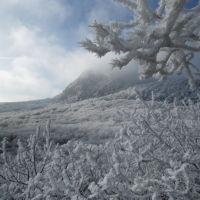 Зимние особенности Железноводского парка, Железноводск