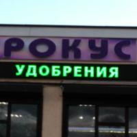 Крокус изготовленно Арт-мастером, Новоалександровск