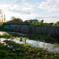 весна..., Кирсанов