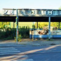 АЗС АИ 76 и 93, Мичуринск