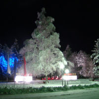 Зимняя ночь р.п. Мордово, Мордово