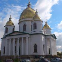 Троицкий собор, Моршанск