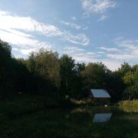 озеро в лесу. пасека, Заинск
