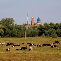 Храм, Новошешминск