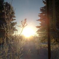 Зима, Каргасок