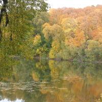 Золотая осень, Богородицк