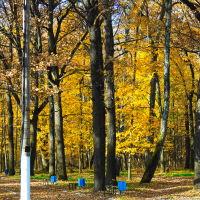 Золотая осень, Болохово