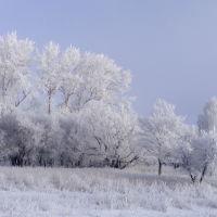 Зима в Узловой, Узловая