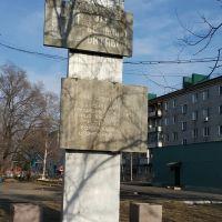 Памятник в Смидовиче, Смидович