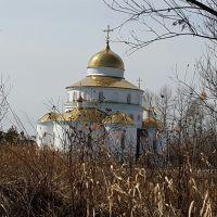 Храм в Смидовиче, Смидович
