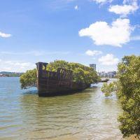 Останки парового судна Эйрфилд, Сидней