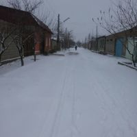 улица шорс, Чкаловск