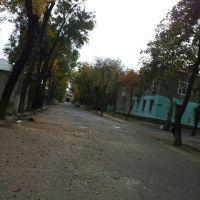 улица Курчатов осень Чкаловск, Чкаловск