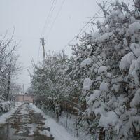 30 марта 2015г.-13 градусов утром., Касансай