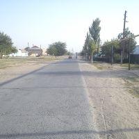г.Сырдарья улица Пушкина❤, Сырьдарья