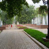 Бульваром  им. А.С.Пушкина всегда приятно прогуляться в летний день, Донецк