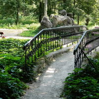 Мостик в природном парке Александрия, г.Белая Церковь, Белая Церковь