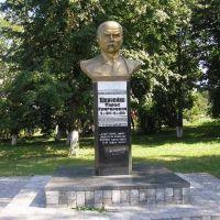 Памятник Шевченко, Володарка
