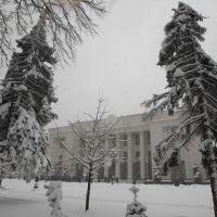 Фото #523655, Киев