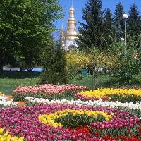 Фото #523666, Киев