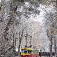 Зима Трамвай, Киев