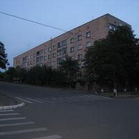 ул. В. И. Чапаева, Новоукраинка