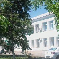 педагогічний коледж, Новый Буг