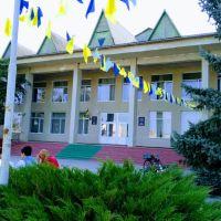 Районный Дом культуры, Фрунзовка