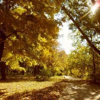 Парк-сад национального музея-заповедника Н.В.Гоголя, Гоголево