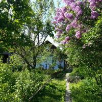 Вулиця Ватутiна, 27, Млинов
