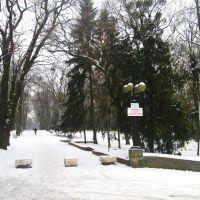 г Ровно -  Парк  Т.Г. Шевченко зимой, Ровно