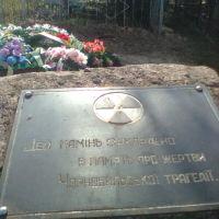 """Бериславское кладбище. """"Этот камень заложен в память о жертвах Чернобыльской трагедии""""., Берислав"""