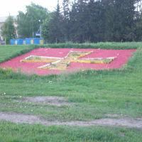 p, Золотоноша