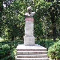 Памятник Шевченку в Козельце, Козелец