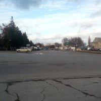 Центр города, Козелец