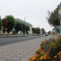 Крыжополь, Крыжополь