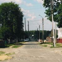 Вулиця Першого Травня, Маневичи
