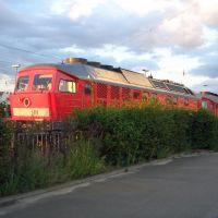 Loks in Cottbus, Котбус