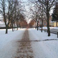 Von-Pentz-Allee im Winter, Грейфсвальд