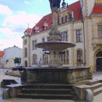 Borwinbrunnen am Markt, Гюстров