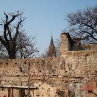Filmpalst Blick auf die Marienkirche, Нойебранденбург