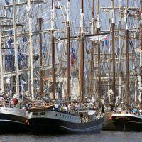 hanse sail 2009, Росток